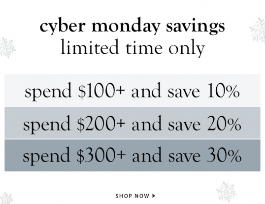 Cyber Monday at Graphic Image